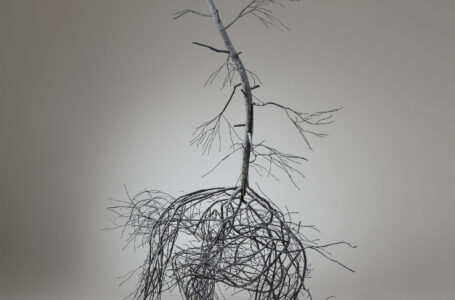 Ağaç Heykeller