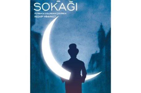 """Kitap Yorum; """"Ay Işığı Sokağı"""" Stefan Zweig"""